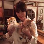 「ダメな私に恋してください」(ダメ恋)の喫茶店の看板猫がかわいい!