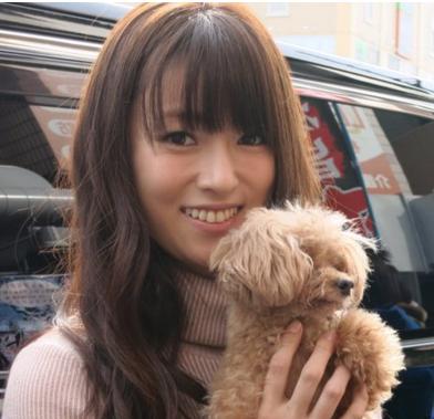 深田恭子の愛犬-画像