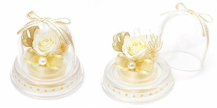 プレゼント用ミニドーム-6月誕生石パールー画像