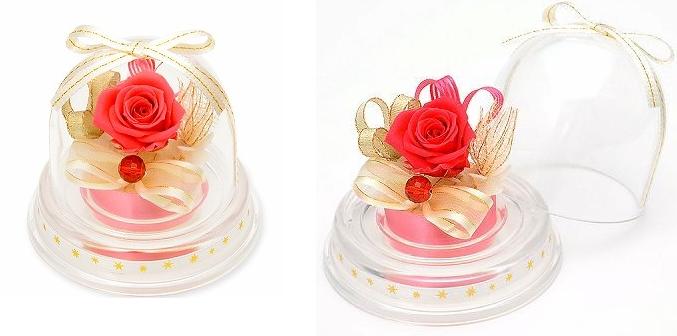 プレゼント用ミニドーム-画像