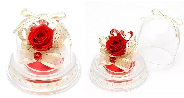 プレゼント用ミニドーム-1月誕生石ガーネットー画像