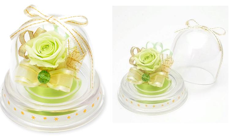 プレゼント用ミニドーム-8月誕生石ペリドットー画像