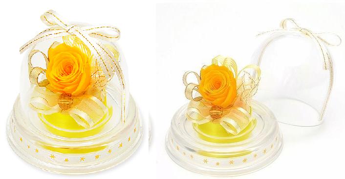 プレゼント用ミニドーム-11月誕生石シトリンー画像